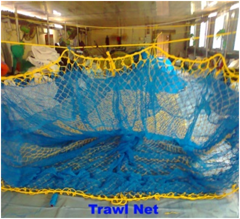05-Trawl-Net